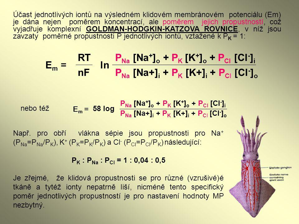 PNa [Na+]o + PK [K+]o + PCl [Cl-]i